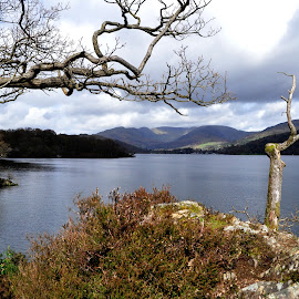 Lake Windermere by Ruth Holt - Novices Only Landscapes ( wray castle, windermere, lake, view, lake district )