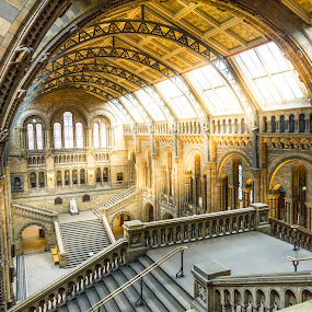 Day at the museum by Andrew Doyle - Buildings & Architecture Public & Historical ( history, landmark, england, london, british, museum, sunlight, natural )