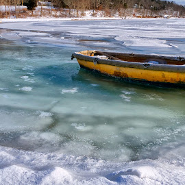 Cotuit Cove by Alan Roseman - Transportation Boats ( winter time, frozen, iced in, cotuit, ice house, wwinter, cape cod, skiff )