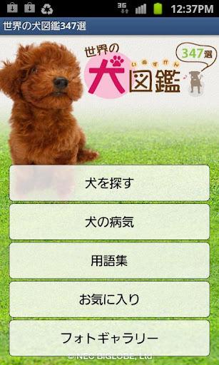 世界の犬図鑑347選