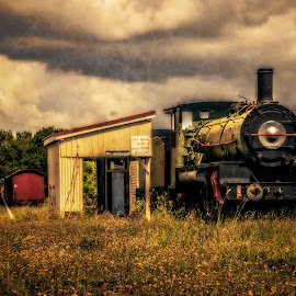 Old Train Graveyard by Esther Visser - Transportation Trains (  )