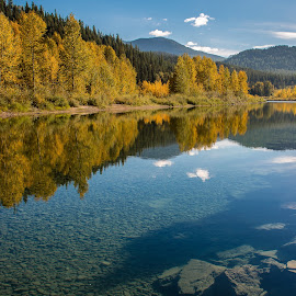 Pristine Nature  by Jason Rambo - Landscapes Forests ( wilderness, nature, clearwater, fallcolors, glacier national park )