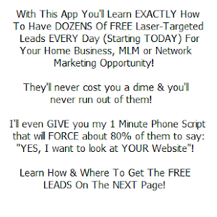 FREE LEADS Home Business & MLM - screenshot