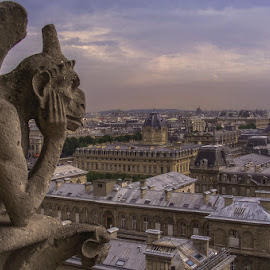 Notre by Macinca Bogdan - Buildings & Architecture Statues & Monuments (  )