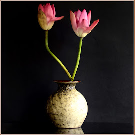 Lotus Buds by Prasanta Das - Artistic Objects Still Life ( vase, lotus, composition, buds )