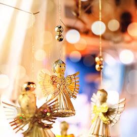 Vánoce / Christmas by Dominik Horvath - Artistic Objects Toys ( macrophotography, xmas, vánoce, christmas, pentax, eldoradothemeart )