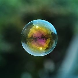 Bubble on a green background by Peter Murnieks - Artistic Objects Other Objects ( bubble, color, green, floating, bubbles, air, yellow, float )
