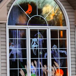 Halloween 2014 by Hien Nguyen - News & Events US Events ( halloween decorations, halloween 1014, halloween custumes, pumpking, halloween windows, halloween )