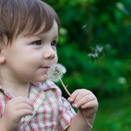 blowball by Maša Pešut Kukina - Babies & Children Toddlers ( blowball, green, toddler, boy, blow, shirt )