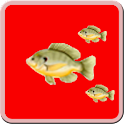Fish Hunter icon