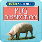 Kid Science: Pig Dissection icon