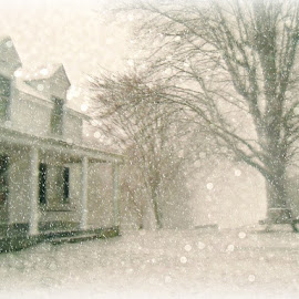 House in a storm snow at the farm by Maria  Blumberg - Buildings & Architecture Homes ( home neighbrs nature architecture, snow storm wind blizzard )