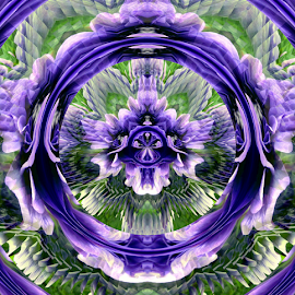 SK 1 - Ornate by Tina Dare - Digital Art Abstract ( abstract, patterns, wheel, designs, distorted, purples, circle, blues, curves, shapes )