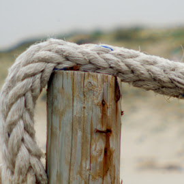 The rope by Andres Geslin - Nature Up Close Sand ( sand, rope, wood, holidays, beach )