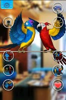 Screenshot of Talking Parrot Couple Free