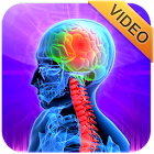 3D Animation Medical Videos icon