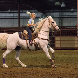 Running Home by Jennifer Clarke - Sports & Fitness Rodeo/Bull Riding (  )