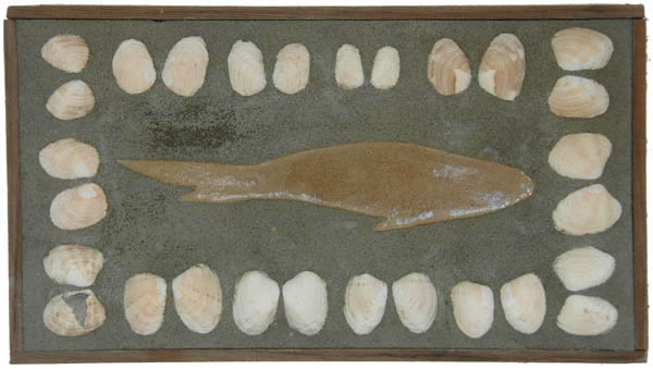 Cut-out Fish and Clam Shell <br> 8 x 14.5 in