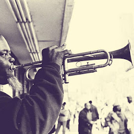 Jazz Man by Liz Ely - Novices Only Portraits & People ( sepia, novice, street, people, man )