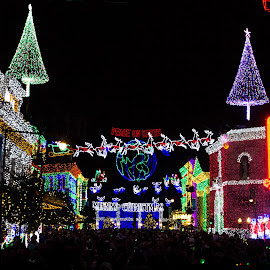 Hollywood Studios by Chris Campbell Stacy Campbell - City,  Street & Park  Amusement Parks ( mood, mood factory, holiday, christmas, hanukkah, red, green, lights, artifical, lighting, colors, Kwanzaa, blue, black, celebrate, tis the season, festive )