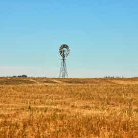 by Cheryl Squires - Landscapes Prairies, Meadows & Fields ( dry, grass, dam, landscape, windmill,  )