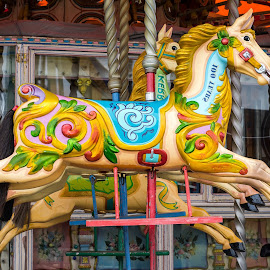 Carousel Horses by Adele Southall - City,  Street & Park  Amusement Parks (  )