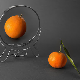 Future by Станимир Сребър - Food & Drink Fruits & Vegetables ( #orange, #stilllife, #6d, #canon, #fruits )