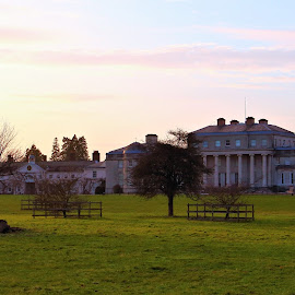 Shugborough Hall by Mark Walker (Karrade) - Buildings & Architecture Homes ( stately home, buildings, shugborough, grounds, evening )
