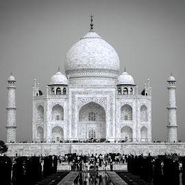 by ClickMyPix Photography - Buildings & Architecture Statues & Monuments ( taj, black and white, taj mahal, india,  )