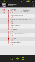 Screenshot of Public Transport - Timisoara