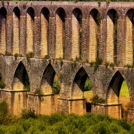 by Fátima Leão - Buildings & Architecture Bridges & Suspended Structures