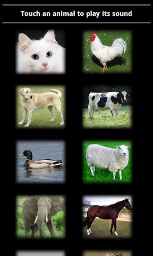 Animal Sounds :-