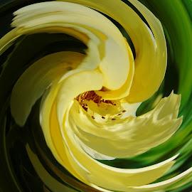 TWIRL ROSE by Wojtylak Maria - Digital Art Abstract ( rose, green, abstarct, yellow, twirl )
