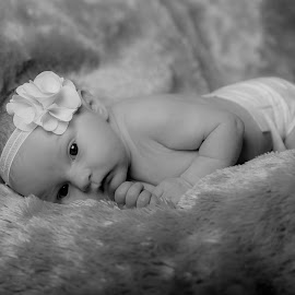AvaGrace by Michael Provenzano - Babies & Children Babies ( babies, baby girl, baby, baby photography, newborn,  )