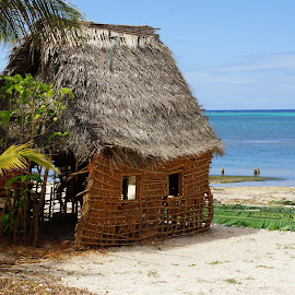 Beach Hut by Susan Fries - Landscapes Travel ( water, roatan, hut, tropical, beach )