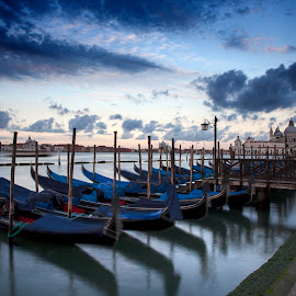 Gondolas by Timothy Johnson - Travel Locations Landmarks ( water, gobolas, boats, venice, canal, italy )