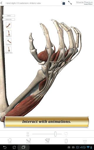 Muscle Premium - screenshot