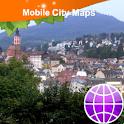 Baden-Baden Street Map icon