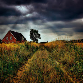 Dark clouds by Stefan Kierek - Landscapes Prairies, Meadows & Fields ( farm, rural live, clouds, tree, path, way )