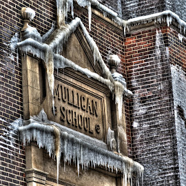 Mulligan by Fred Faulkner - City,  Street & Park  Neighborhoods ( lincoln park, ice, aftermath, icecicle, chicago, fire )