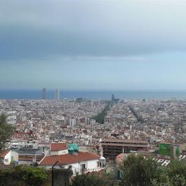 BArcelona from Parc Guel by Rich Eginton - City,  Street & Park  Skylines ( cityscapes, mediterranean, parc guel, las ramblas, barcelona,  )