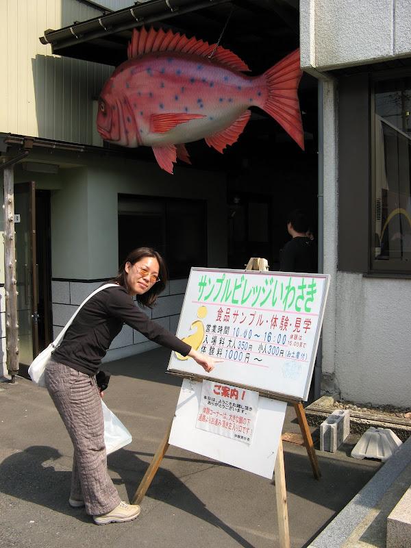4-岩崎模型-10