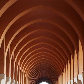 Bir Ali  by Edwin Pfim - Buildings & Architecture Architectural Detail ( , Architecture, Ceilings, Ceiling, Buildings, Building )