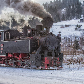 Steam in the country by Pascal Hubert - Transportation Trains