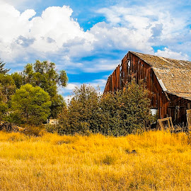 The Ranch by Clifford Krous - Landscapes Prairies, Meadows & Fields ( farm, field, ranch, barn, rustic, abandoned )