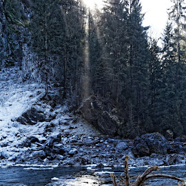 Rays of hope. by Peder Magerøy - Landscapes Forests ( water, washington, winter, cold, ice, snow, waterfall, wa, landscape, log, sun, river )