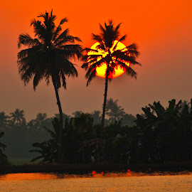 Kerala sunset by Mike O'Connor - Landscapes Sunsets & Sunrises ( canals, sunset, kerala, sun, palms )