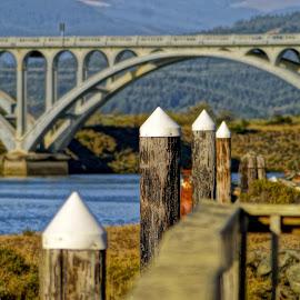 Nature Meets Man by Stephanie Turner - Buildings & Architecture Bridges & Suspended Structures ( water, pattern, waterscape, transportation, bridge, landscape )