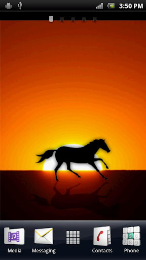 Wild Horse Live Wallpaper