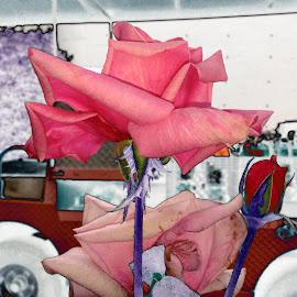 Wheels and Flowers by Deborah Arin - Digital Art Things ( abstract, funky, romantic, roses, pink )